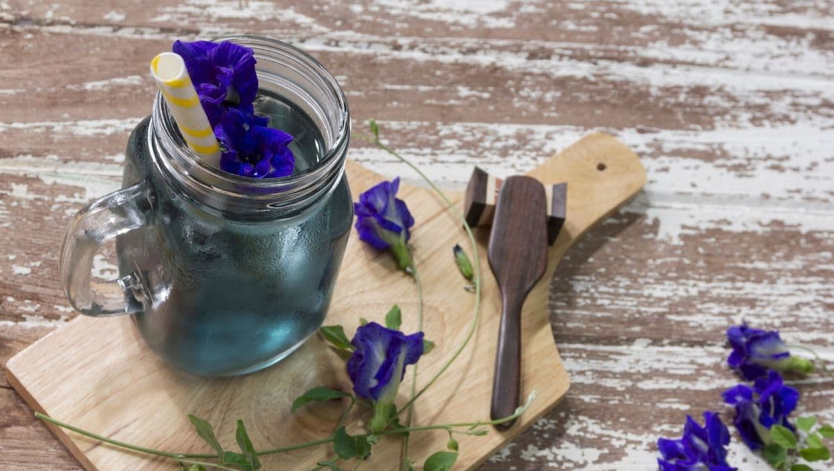 Butterfly Pea Flower syrup