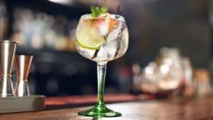 Gin and Tonic balloon Glass