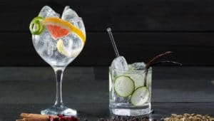 Best Gin and Tonic glass